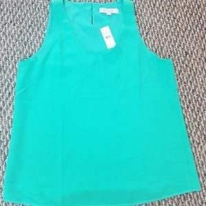 Teal shell